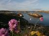 Koster Islands