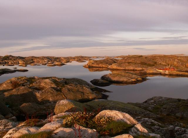 Koster Islands, Sweden 2009